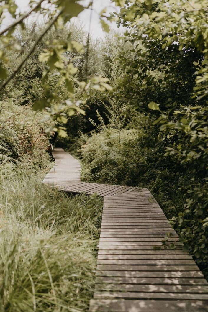 Réserve Naturelle de l'Etang Noir à Seignosse - Blog Voyage, Conseils et Bonnes adresses